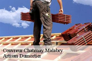 Couvreur  chatenay-malabry-92290